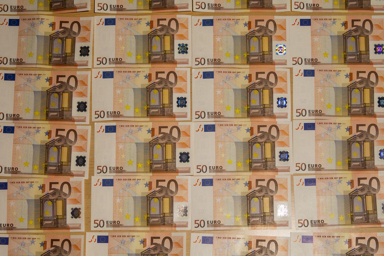Vyriausybė pasiskolino 15 mln. Eur už 0,738%