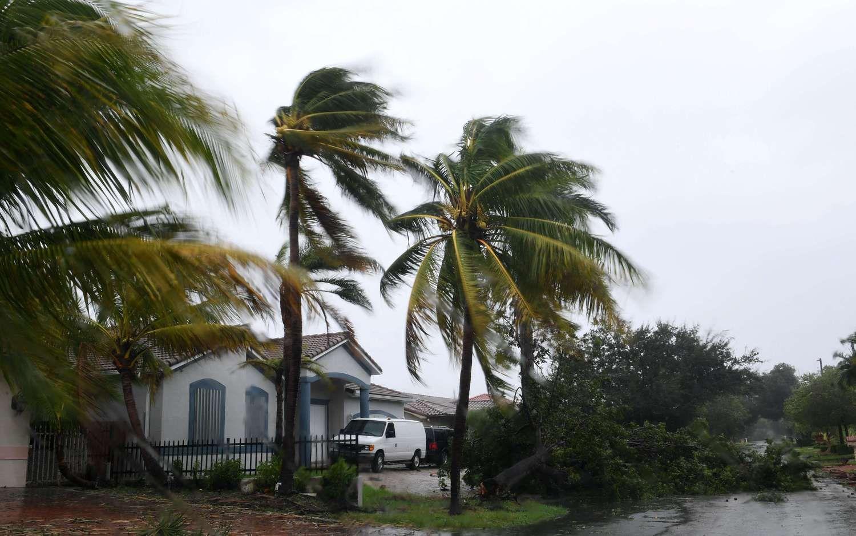 """Uragano """"Irma"""" padaryta žala gali siekti 300 mlrd. USD"""