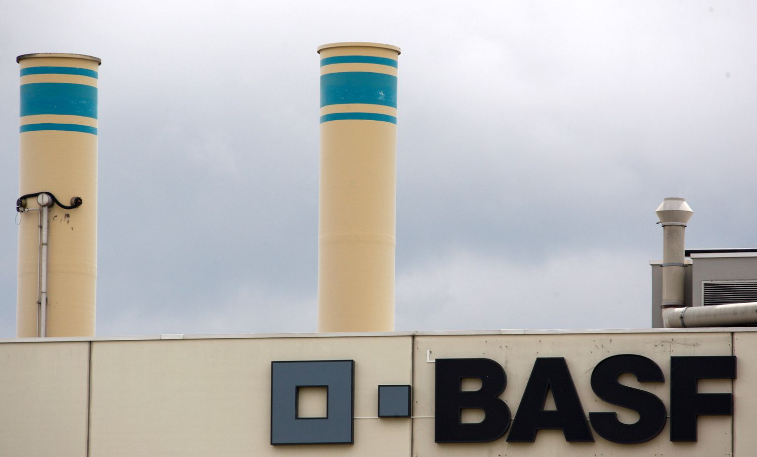 BASF's Late Grab for Bayer Seed Assets Marks Strategy Shift