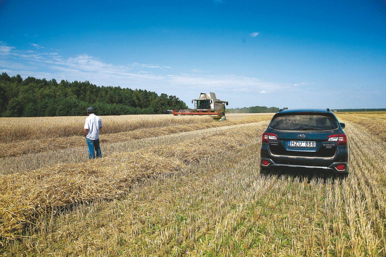 Ar tikrai parama žemės ūkiui gyvybiškai svarbi?