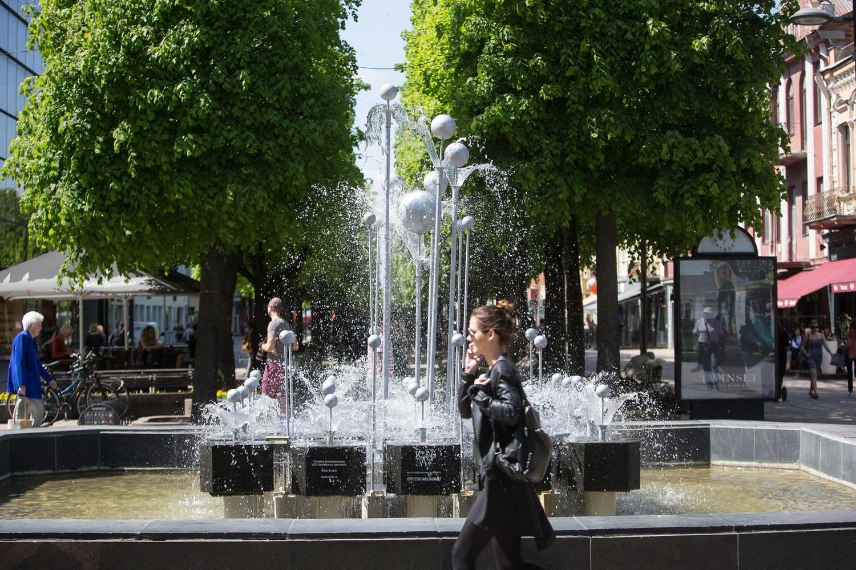 Kaunas: kartą uždirbęs iš turistų, negali sustoti