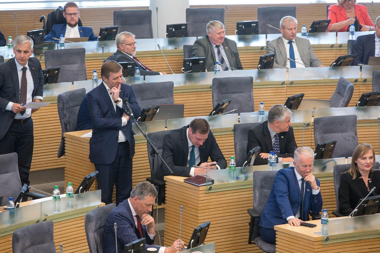 Seimas po svarstymo pritarė visuotiniam turto deklaravimui