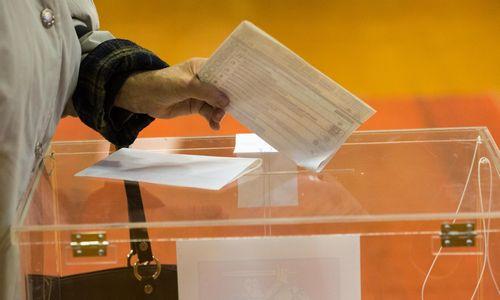 VŽ paaiškina: kada yra galimi pirmalaikiai Seimo rinkimai