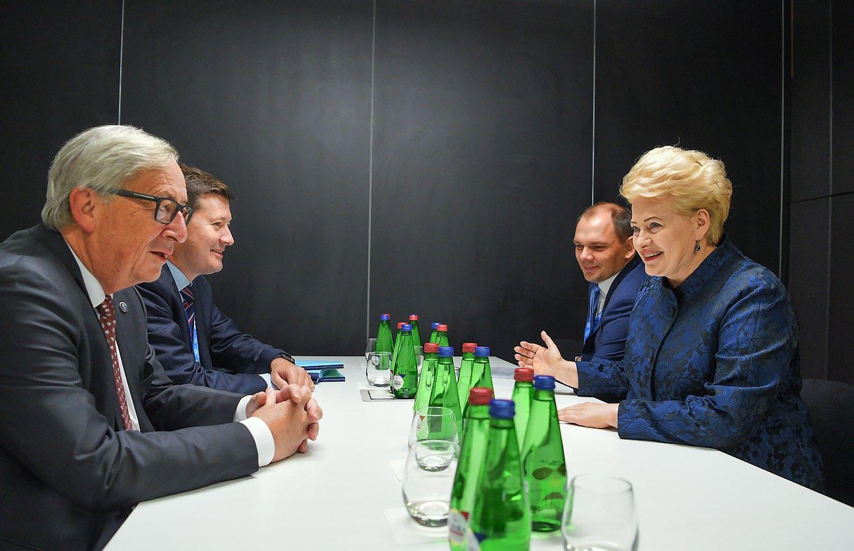Prezidentė: reikia užsitikrinti ES paramą sinchronizacijai ir IAE uždarymui