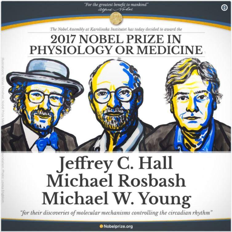 Nobelio medicinospremija – už biologinio laikrodžio paaiškinimą
