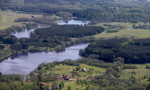 NT kainų bumas Švedijoje metasi į miškus, banga ritasi ir link Lietuvos