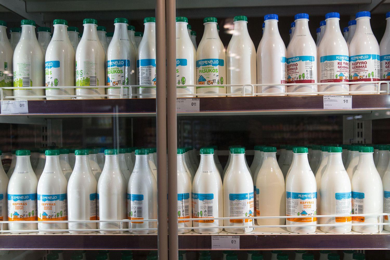 Prognozuoja pieno kainų kritimą