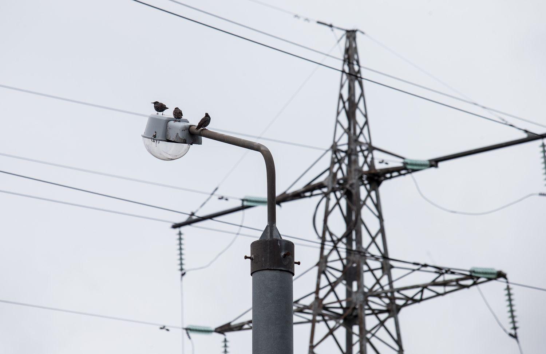 Didėja mokestis už elektros eksportą į Rusiją ir Baltarusiją