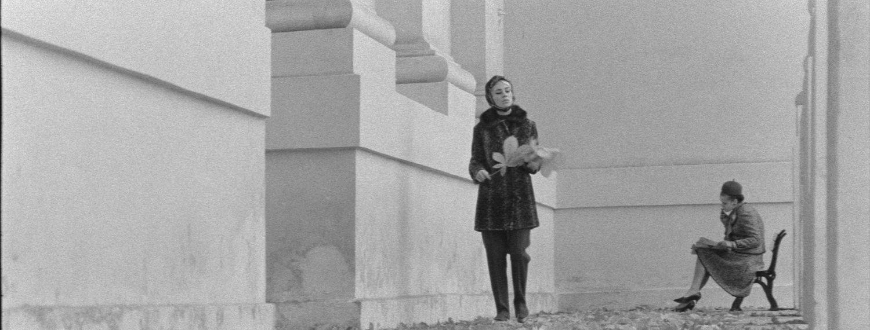 Suskaitmenintas lietuviško kino paveldaskeliasi į nemokamą svetainę