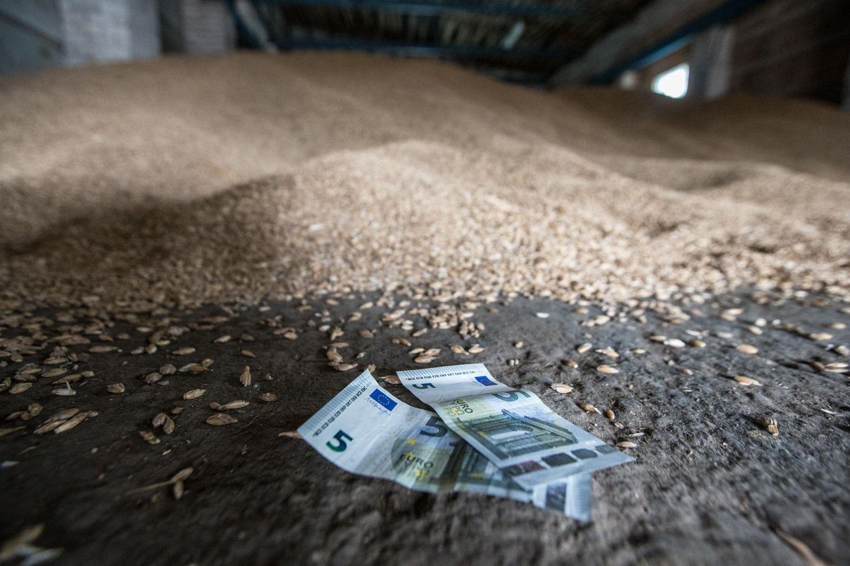 Žemės ūkis po 2020-ųjų: išmokos laipsniškai mažės