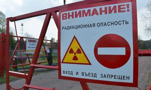 Iš Rusijos įvežtuose grybuose Prancūzija aptiko radioaktyvaus cezio