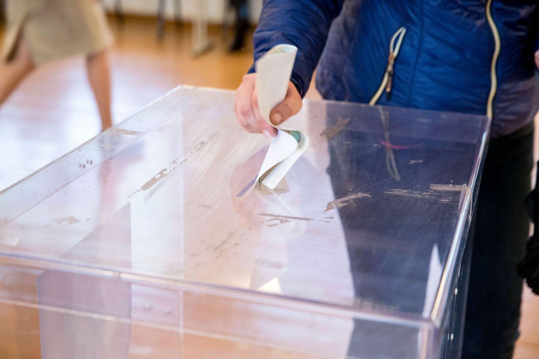 Spręs, kada ir kaip surengti referendumą dėl dvigubos pilietybės