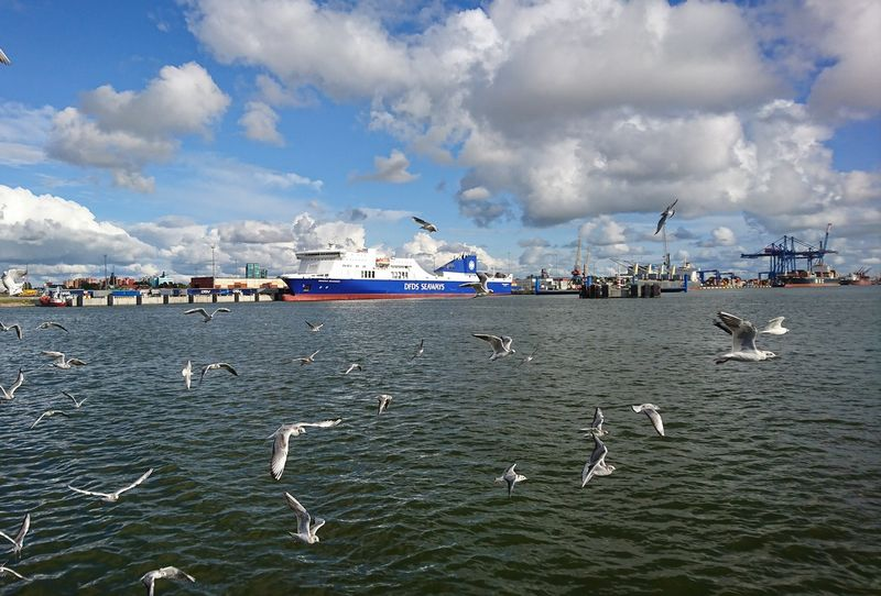 Klaipėdos jūrų uostas 2017 m. pasiekė naują krovos rekordą. Lino Butkaus (VŽ) nuotr.