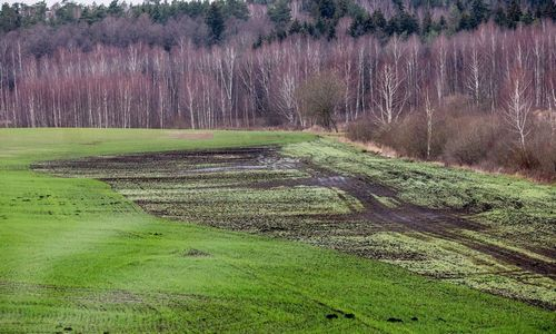 Lietaus nuniokotiems ūkiams - 9,12 mln. Eur
