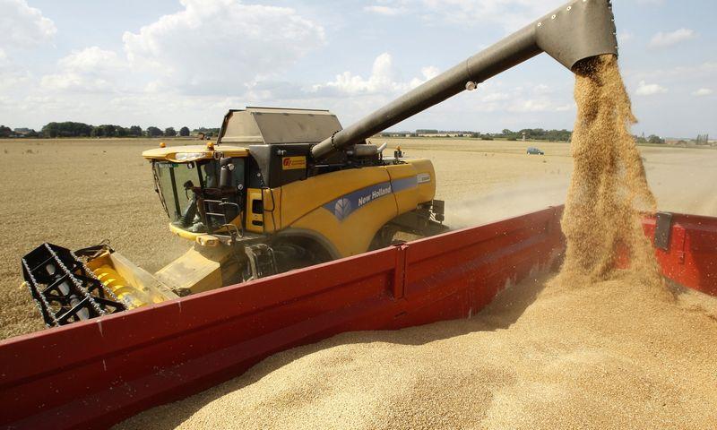 """Žemės ūkio žaliavų verslas tradiciškai laikomas vienu konservatyviausių. Pascalio Rossignolio (""""Scanpix"""" / """"Reuters"""") nuotr."""