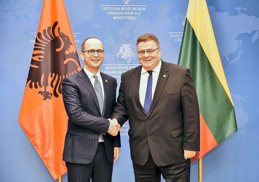 ES nurodė narystės perspektyvą Balkanų šalims, Lietuva remia Albanijos siekį