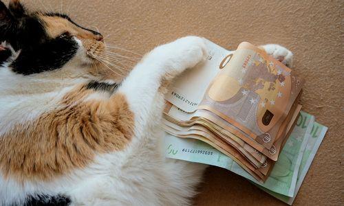 Imdami vartojimo kreditus lietuviai pernai nesikuklino