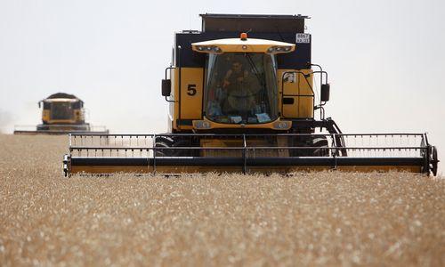 Rusijos maisto pramonė muša eksporto rekordus