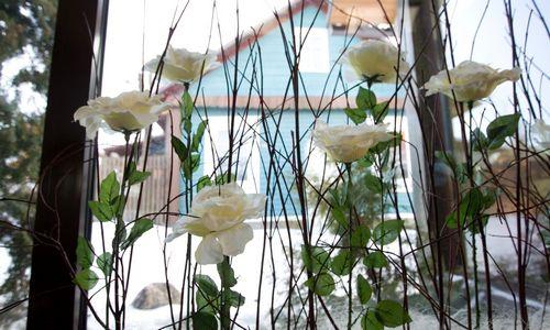 Kinai dairosi vietos dirbtinių gėlių gamybai, šiauliečiai siūlosi į partnerius