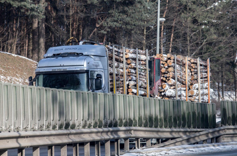 Medienos importui iš Baltarusijos nauji apribojimai