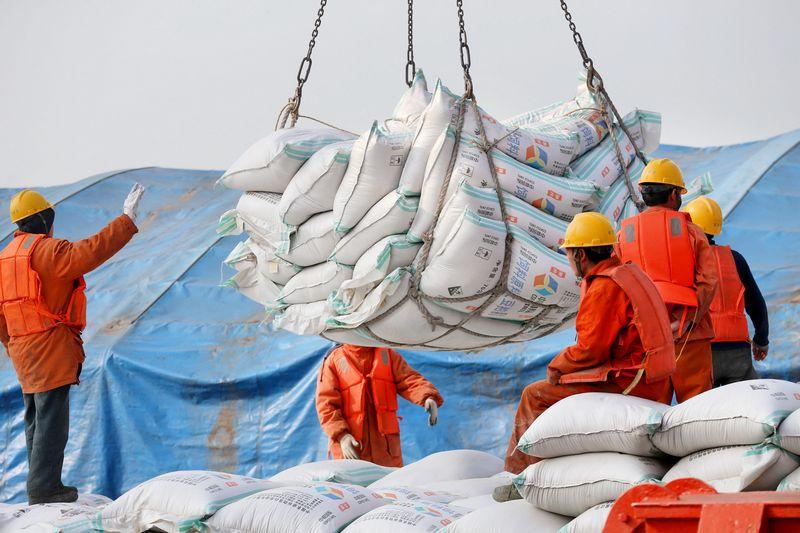 """Amerikietiškų sojos pupelių eksporto apmokestinimas Kinijoje bus skausmingas JAV žemės ūkiui. """"Reuters"""" / """"Scanpix"""" nuotr."""