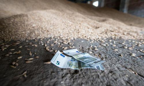 Kreditų garantijų ūkininkams šiemet suteikta trečdaliu daugiau