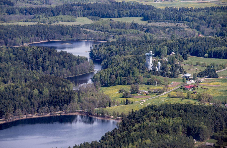 Aplinkos ministras nemato priežasčių apriboti miško pirkimus
