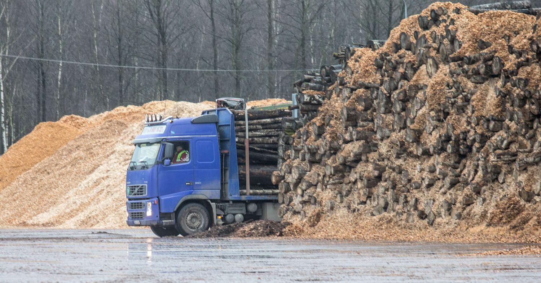 """""""Juodeliai"""" Molėtų rajone ketina investuoti 50 mln. Eur"""