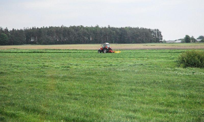Seimas jau ne vieną kartą svarstė galimybę suformuoti specialią komisiją dėl padėties žemės ūkyje. Juditos Grigelytės (VŽ) nuotr.