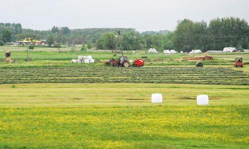 EK mažina paramą Lenkijos žemės ūkiui