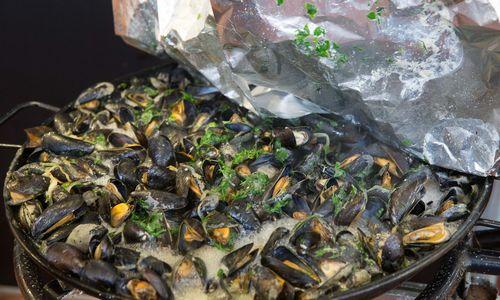 Jūra žmonijai grąžina šiukšles: dauguma midijų užterštos plastiku