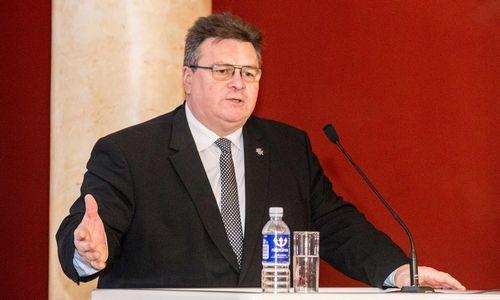 Linkevičius Ukrainos verslą paragino aktyviau ieškoti partnerių Lietuvoje