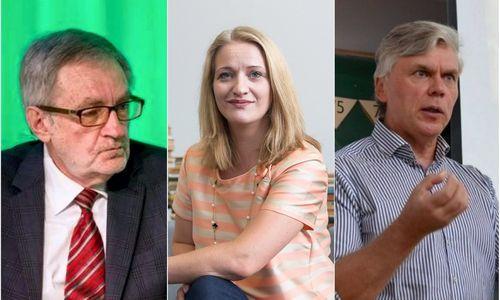 Ekonomistai: mokesčių reforma viduriniosios klasės nesustiprins