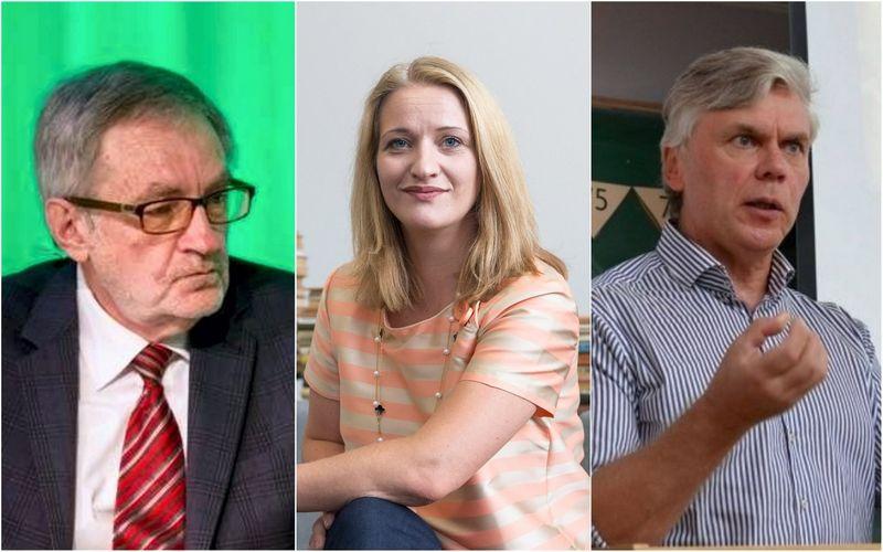 VŽ montažas. Ekonomistai: Teodoras Medaiskis, Jekaterina Rojaka, Linas Čekanavičius.