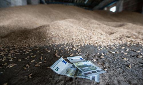 Viešinimui skirtus 4 mln. Eur ŽŪM žada perskirstyti ūkininkams