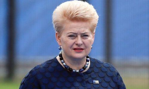 Grybauskaitė nerimauja dėl Trumpo susitikimo su Putinu