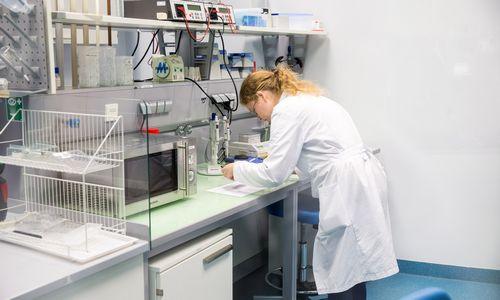 """V. Bumelio """"Celltechna"""" tikisi sukurti pasaulinę inovaciją"""