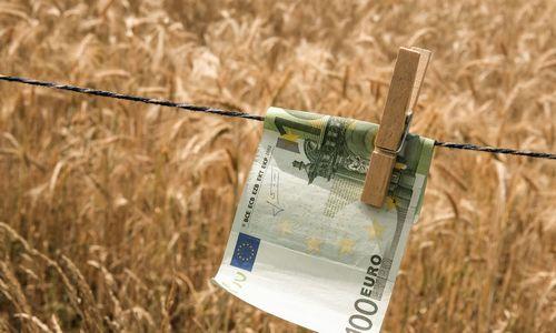 Anksčiau pradedamos mokėti kompensacijos pernai nuo liūčių nukentėjusiems ūkininkams