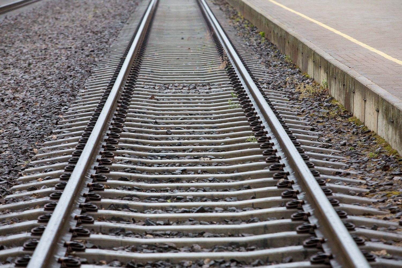 Keleivinio traukinio Kijevas-Ryga maršrutą planuojama prailginti iki Talino