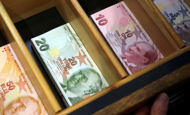 Domino efekto finansų rinkose iš Turkijos nesitiki
