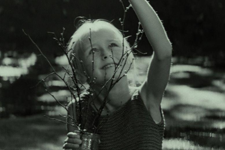 """Prancūzijos kino teatruose debiutuoja A. Žebriūno """"Gražuolė"""""""