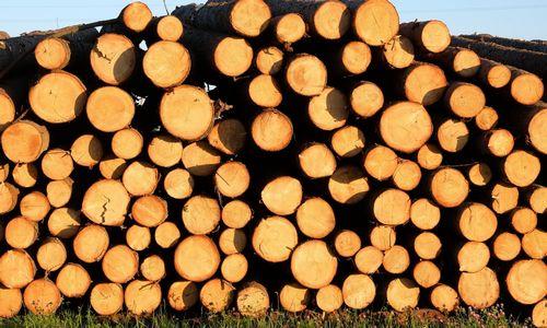 Pabrangus medienai, sąlygas diktavo ir pardavėjai