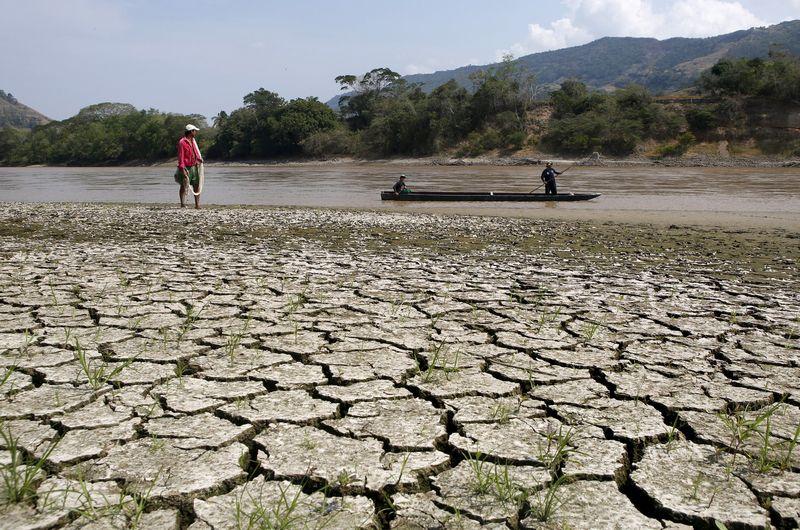"""Nusekusi ilgiausia ir svarbiausia Magdalenos upė Kolumbijoje, 2016 m. sausį, per pastarąjį El Ninjo. Johno Vizcaino (""""Reuters"""" / """"Scanpix"""") nuotr."""