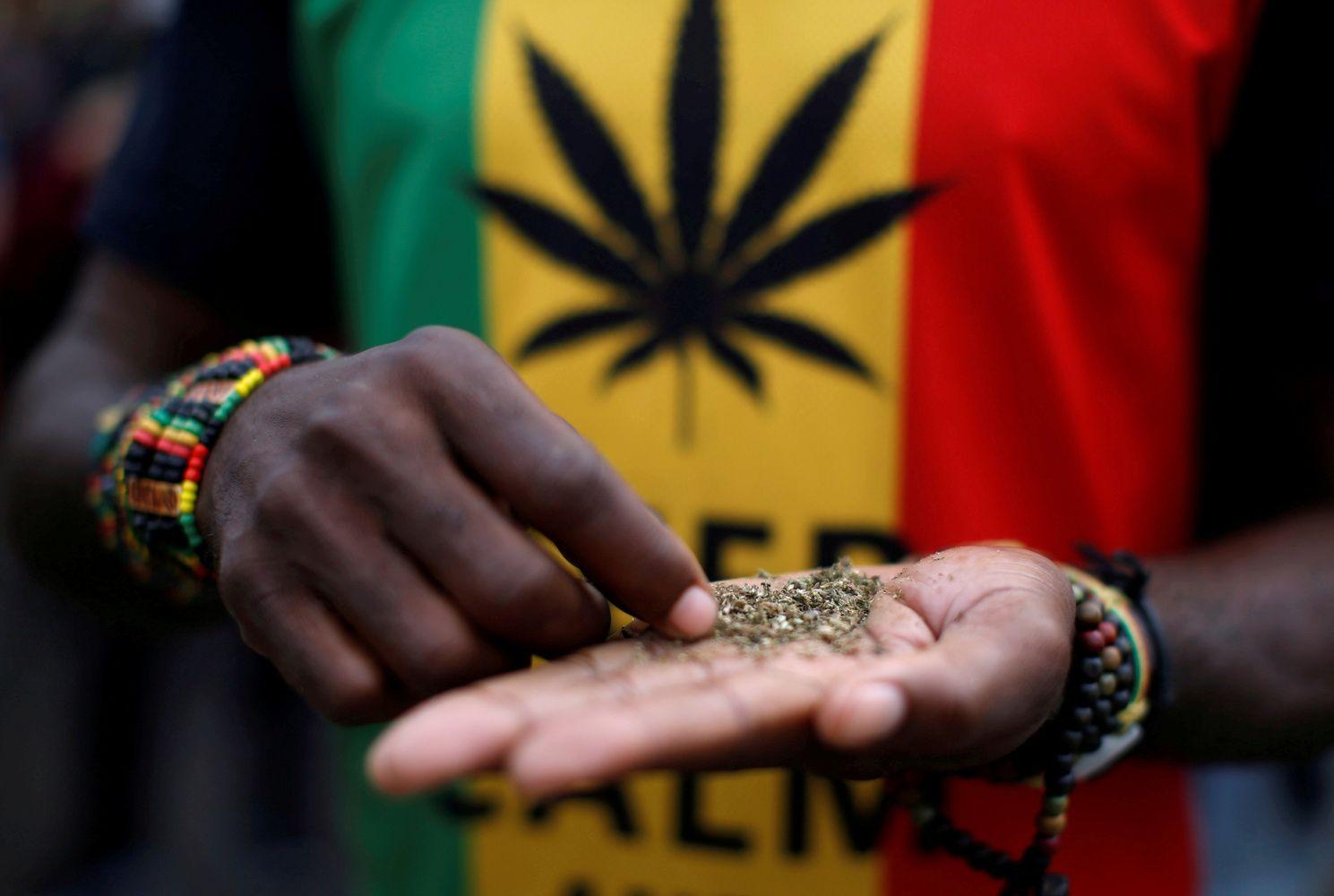 Marihuanos akcijų bumas: brangsta iki 90% per dieną
