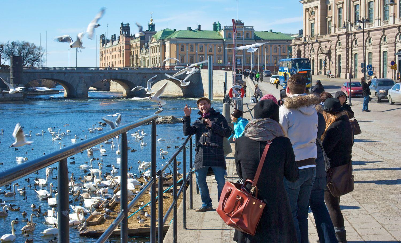 Švedijos NT rinkajau siunčia pozityvesnių signalų investuotojams