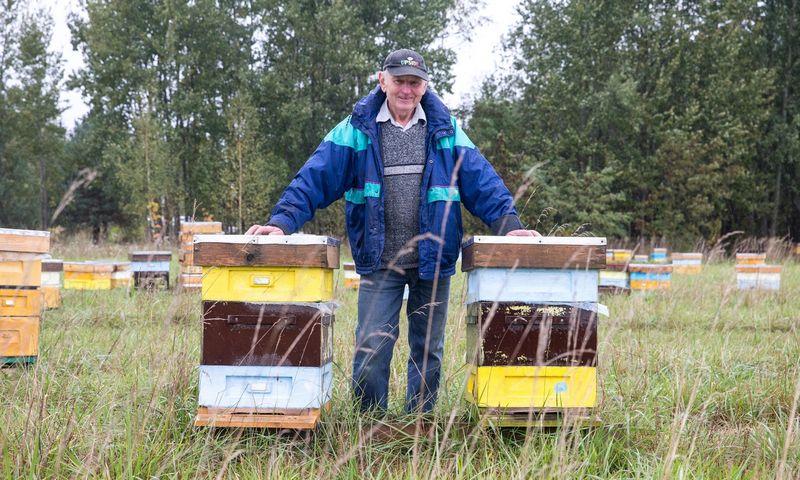 Bitininkas Aleksandras Kavaliauskas Panevėžio rajone turi daugiau kaip 600 bičių avilių. Juditos Grigelytės (VŽ) nuotr.