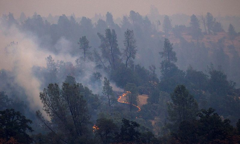 """Jeigu visuotinė temperatūra pakil ne iki 1,5, o iki 2 laipsnių Celsijaus – kur kas daugiau žmonių truks vandens, maisto atsargų, daug daugiau šalių gyvens nepritekliuje, siautės sausros ir dažnesni miškų gaisrai. Bobo Strongo (""""Reuters"""" / """"Scanpix"""") nuotr."""