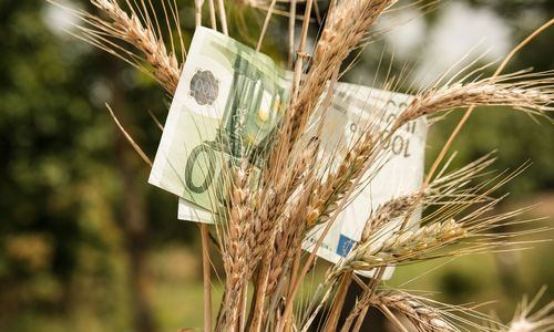 Vyriausybė investiciniams fondams Lietuvoje žada vienas palankiausių sąlygų ES