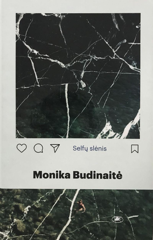 """Monika Budinaitė, """"Selfų slėnis"""", Lietuvos rašytojų sąjungos leidykla, 2018 m., p. 192"""