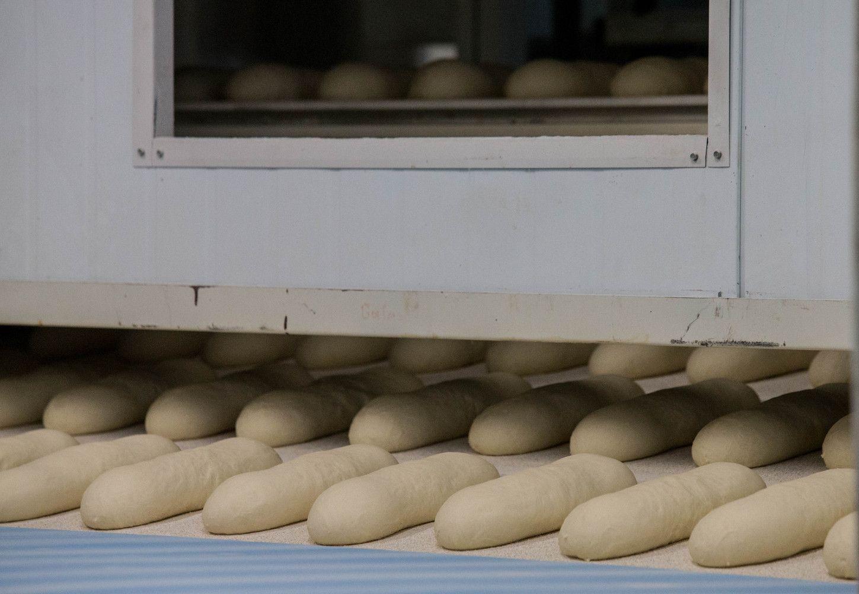 Duonininkų investicijos – į naujus produktus ir sąnaudų mažinimą